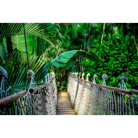 Mural bosque puente madera