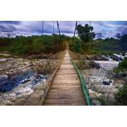 Mural de vinilo puente colgando río - vinilo decorativo
