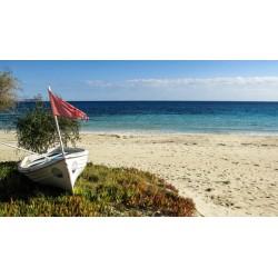 Fotomural Chipre