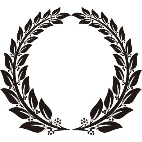 Vinilo laureles campeón