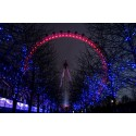 Fotomural London Eye noche