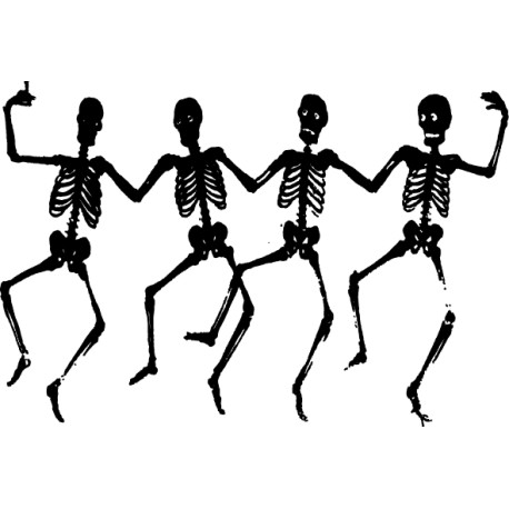 Adhesivo esqueletos