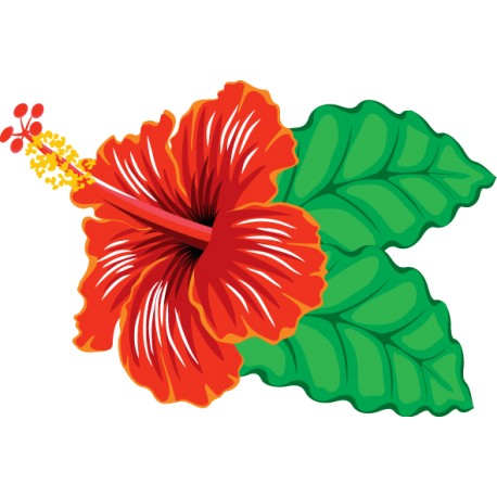 Vinilo flor exótica INVERTIDO