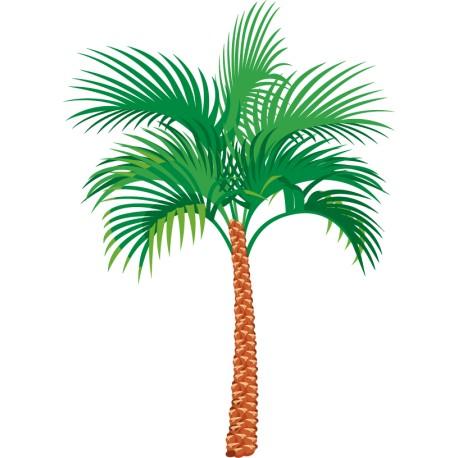 Vinilo palmera éxotica
