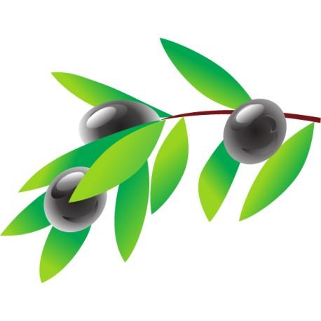 Vinilo cocina rama olivo