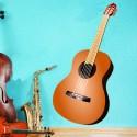 Vinilo guitarra