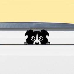 Pegatina perro para coche