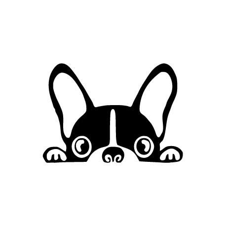 pegatina perro coche asomándose