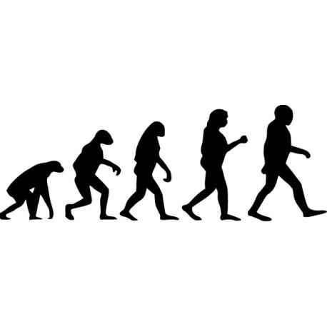 Vinilo evolución hombre