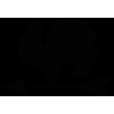 Vinilo pizarra adhesiva gallo