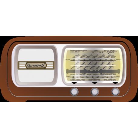 Vinilo radio antigua