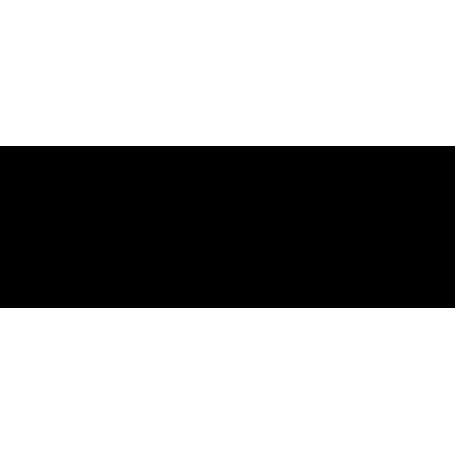 Vinilo bandas laterales para coche