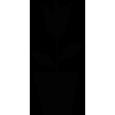 Vinilo decorativo tulipán en macetero