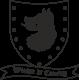 Vinilo decorativo escudo Juego de Tronos