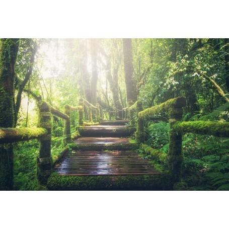 Vinilo fotomural puente bosque